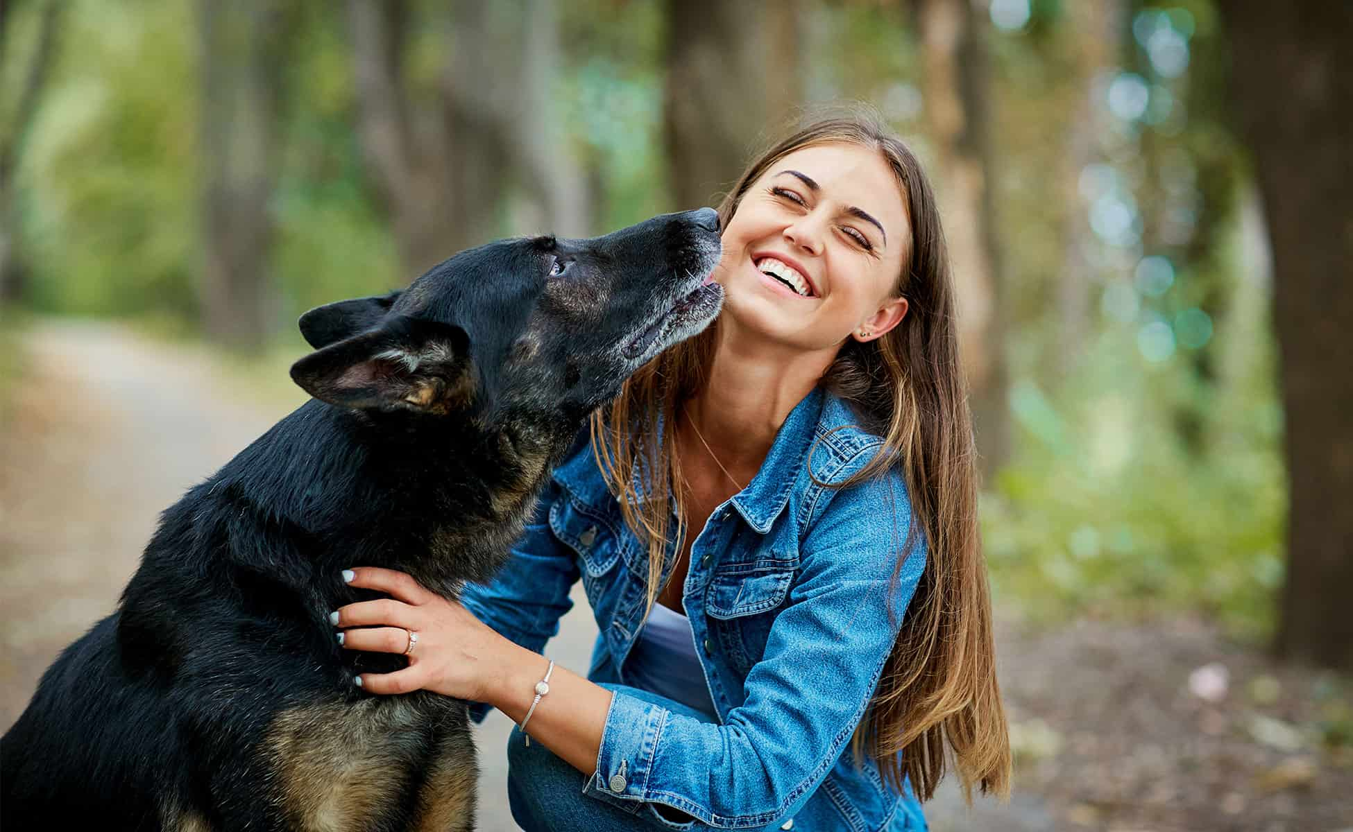 York Professional Pet Sitting and Dog Walking | Newmarket
