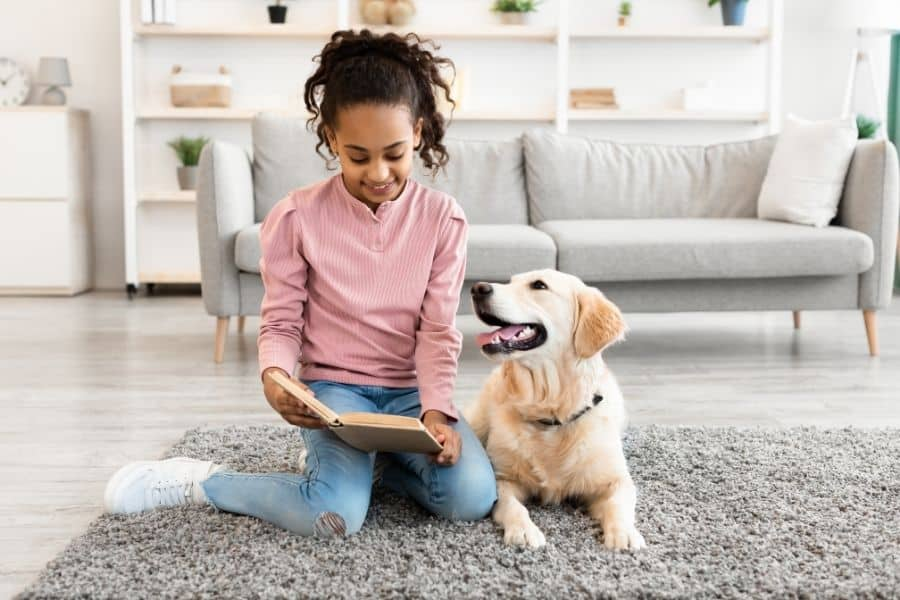 Preparing Your Dog For Back To School Season (