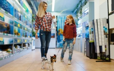 The Best Pet Product Shops in Aurora and Newmarket