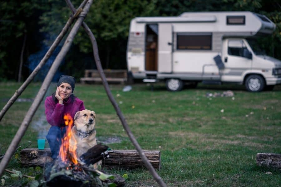 Places to Camp with Your Dog in Ontario This Summer